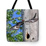 Pileated #27 Tote Bag