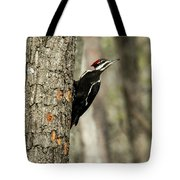 Pileated About To Take Flight Tote Bag