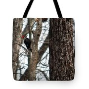 Pileated Billed Woodpecker Tote Bag