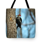 Pileated Billed Woodpecker Pecking 3 Tote Bag
