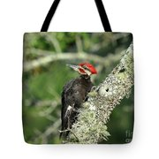 Pileated Perch Tote Bag
