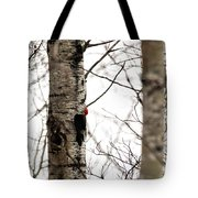 Pileated Tote Bag