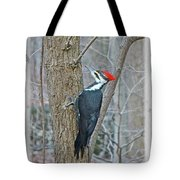 Pileated Woodpecker - Dryocopus Pileatus Tote Bag