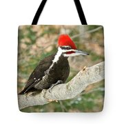 Pileated Woodpecker 6073 Tote Bag