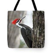 Pileated Woodpecker In Spring Tote Bag