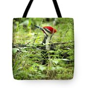 Pileated Woodpecker On The Ground No. 1 Tote Bag