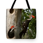 Pileated Woodpecker Ready To Fledge Tote Bag