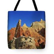 Pilgrim Tote Bag