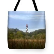 Pillar Of St. Augustine Tote Bag