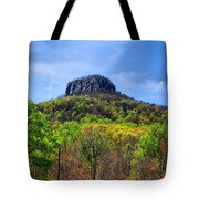 Pilot On A Spring Day Tote Bag
