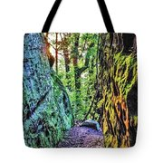 Pilot Rock Face Tote Bag