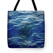 Pilot Whale 9 The Mermaid  Tote Bag