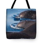 Pilot Whales 1 Tote Bag