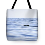 Pilot Whales 2 Tote Bag