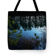 Pine Barren Reflections Tote Bag