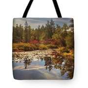 Pine Barrens New Jersey Whitesbog Nj Tote Bag