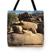 Pine City Boulders Tote Bag