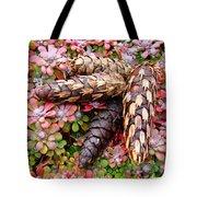 Pine Cones Art Print Botanical Garden Baslee Troutman Tote Bag