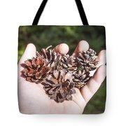 Pine Cones Hand Tote Bag