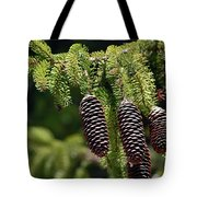 Pine Cones On The Bough Tote Bag
