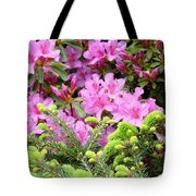 Pine Conifer Pink Azaleas 30 Summer Azalea Flowers Giclee Art Prints Baslee Troutman Tote Bag
