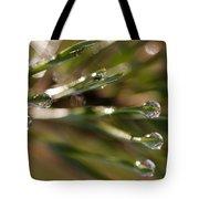 Pine Drops Tote Bag