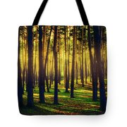 Pine Forest In La Boca Del Asno-segovia-spain Tote Bag