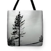 Pine In Snow Tote Bag