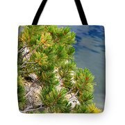 Pine Needles Over Water Tote Bag