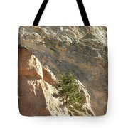 Pine On Limestone Wall Tote Bag