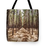 Pine Plantation Wide Color Tote Bag by Tommy Patterson