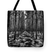 Pine Plantation Wide Tote Bag by Tommy Patterson