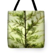Pine Shower Tote Bag