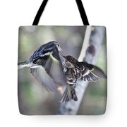 Pine Siskins Fighting 6829 Tote Bag