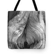 Pine, Split Trunk, Sierra Nevada Mountains, Ca Tote Bag
