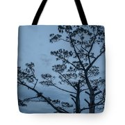 Pine Tree Antigua Guatemala Tote Bag