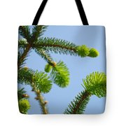 Pine Tree Branches Art Prints Blue Sky Botanical Baslee Troutman Tote Bag
