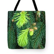 Pine Tree Branches Art Prints Conifer Forest Baslee Troutman Tote Bag