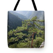 Pine Tree On Mountain Landscape Tote Bag
