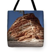 Pine Tree On Sandstone Tote Bag
