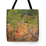 Pine Trees And Forest Tote Bag