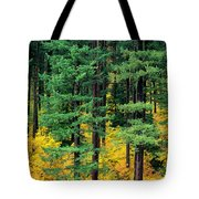 Pine Trees In Autumn Tote Bag