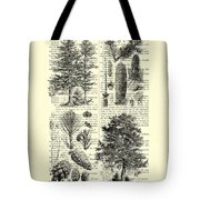 Pine Trees Study Black And White  Tote Bag