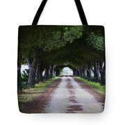 Pine Trees Vendres Tote Bag