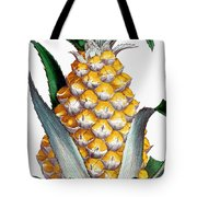 Pineapple, 1789 Tote Bag