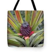 Pineapple, Oahu Tote Bag