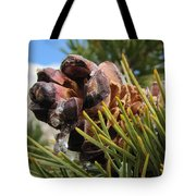 Pinecone With Dripping Sap  Tote Bag