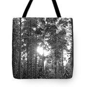 Pines 3 Tote Bag