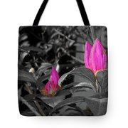 Pink-1 Tote Bag