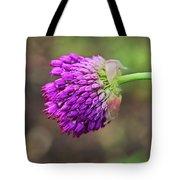 Pink Allium Tote Bag